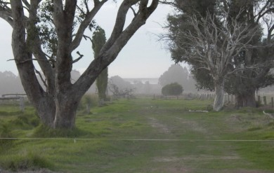 Toxic Dust Polluting Neighbouring Farmland